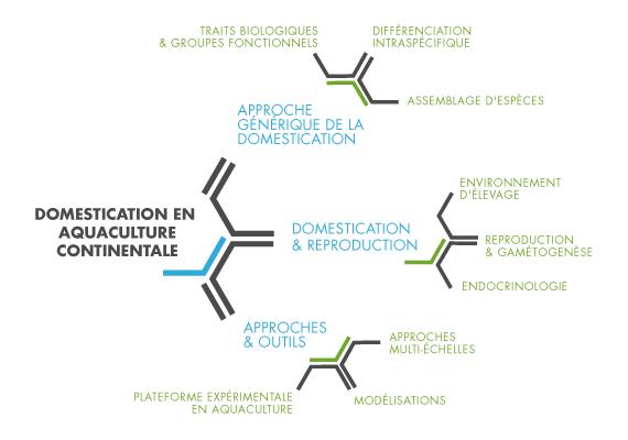 Shéma d'organisation de la thématique DAC